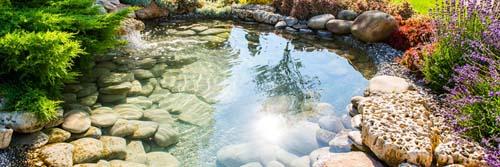 river rock sample Pond